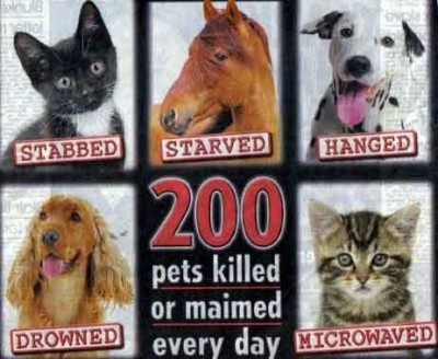 Stop-Animal-Cruelty-against-animal-cruelty-7968325-462-379
