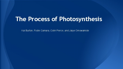 Photosynthesis Lesson