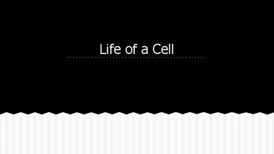 Life of a Cell