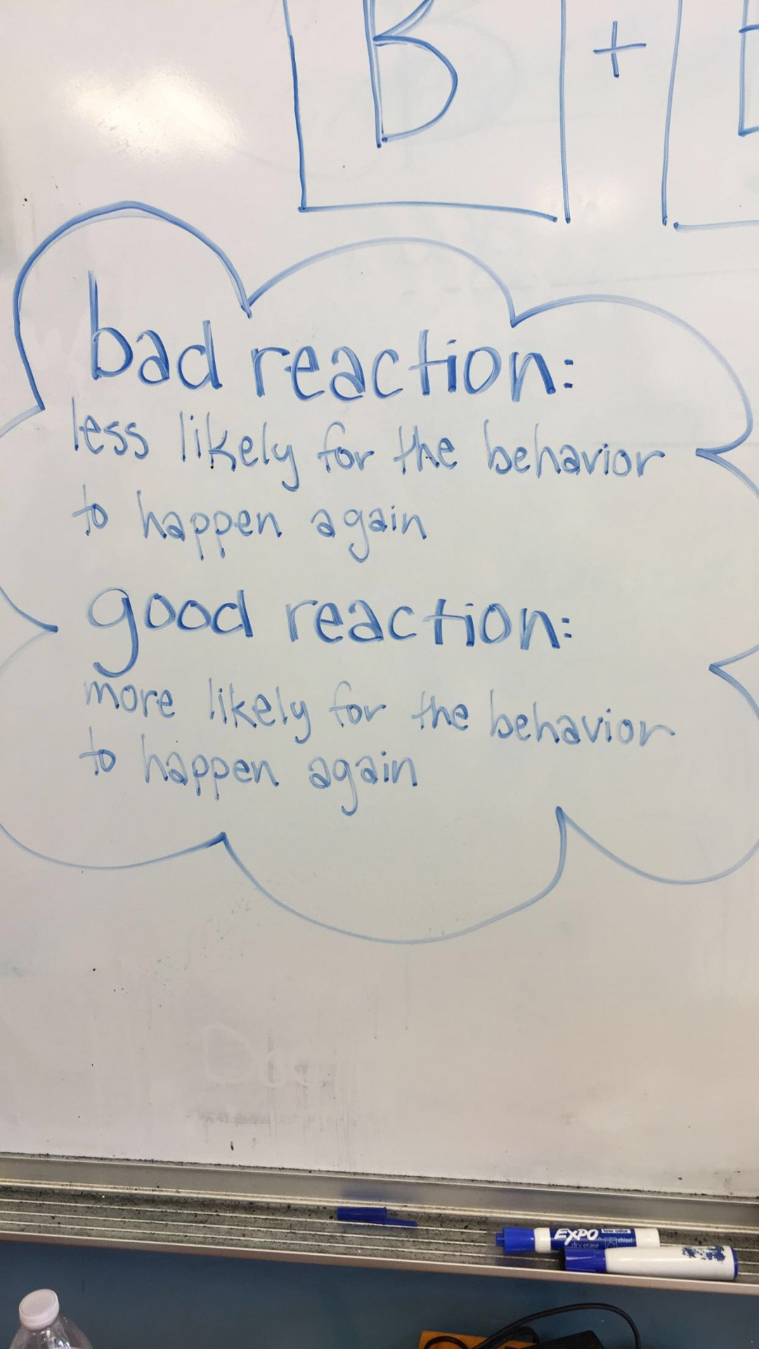 This was from one of my favorite lessons that I taught about behavioral reactions.