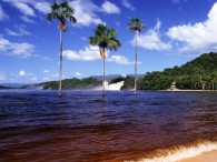 canaima-national-park_6433_600x450